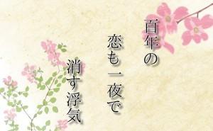 百年の。川柳ブログ